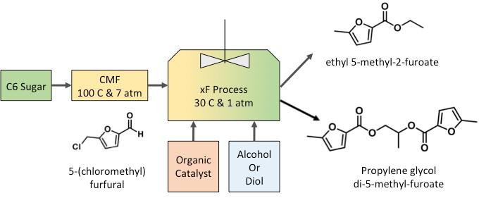 xF Process Flow Diagram